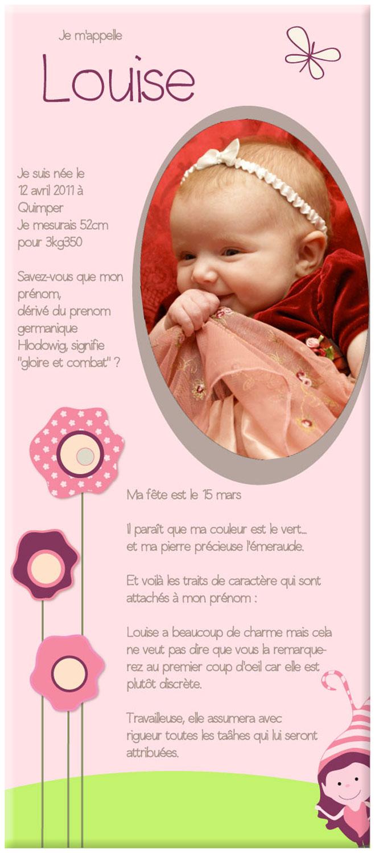 Cadre naissance b b fille fleurs et elfes avec photo et - Cadre avec prenom bebe ...
