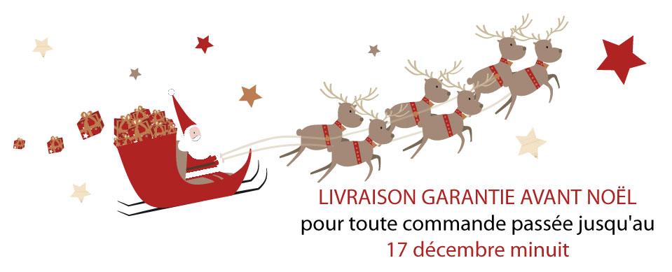Livraison garantie avant Noël pour toute commande passée jusqu'au 17 décembre minuit